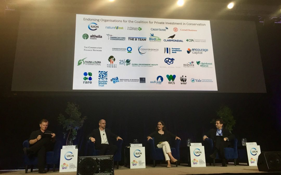 New coalition launches to scale private conservation investment at IUCN World Conservation Congress