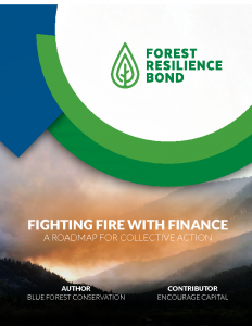 Fighting Fire With Finance: A Roadmap for Collective Action