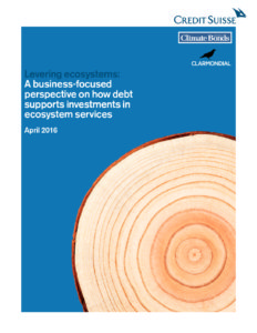 Levering ecosystems: A business-focused perspective on how debt supports investments in ecosystem services