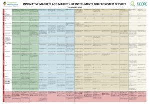 Innovative markets and market-like instruments for ecosystem services