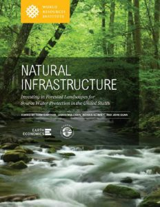Natural Infrastructure. Investing in Forested Landscapes for Source Water Protection in the United States