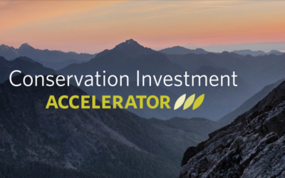 TNC NatureVest Launches Conservation Investment Accelerator Grant Award Program
