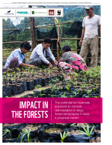 Impact in the Forests: The Potential for Business Solutions to Combat Deforestation in Large Forest Landscapes in Asia
