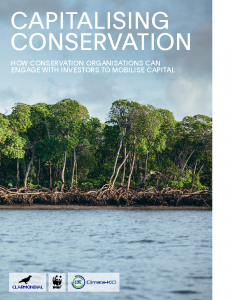 Capitalising Conservation