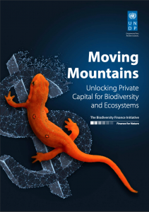 Moving Mountains: Unlocking Private Capital for Biodiversity and Ecosystems (November 2019)